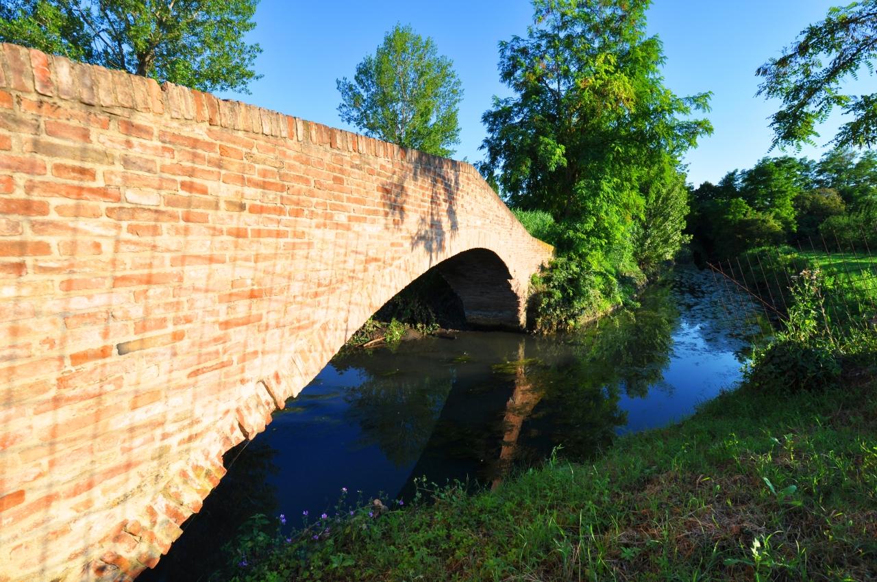 Ponte bionda 1 (2)