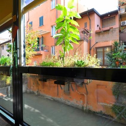 Dal terrazzino del Caffè Opera E Tulipani. e Tulipani.
